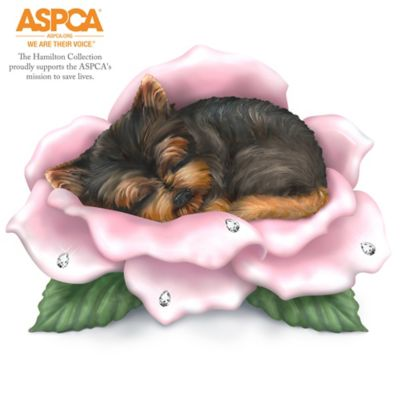 Blake Jensen Yorkies Support ASPCA's Mission To Save Lives by
